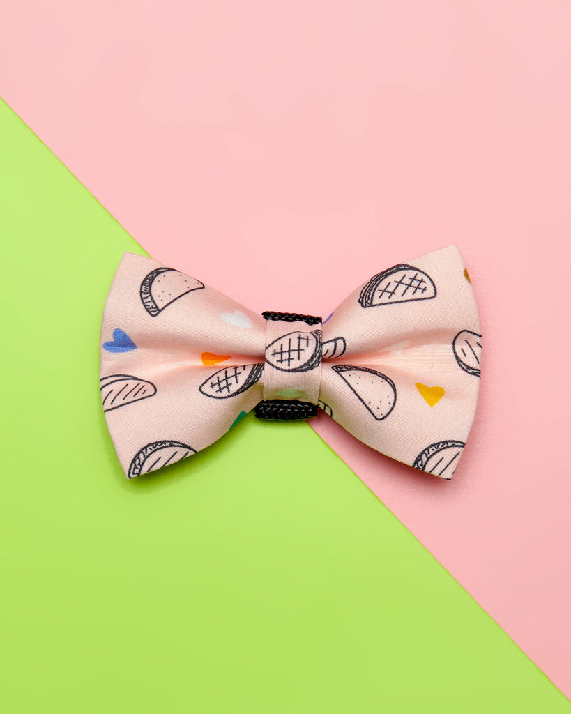 Dog Bow Tie in Taco Time