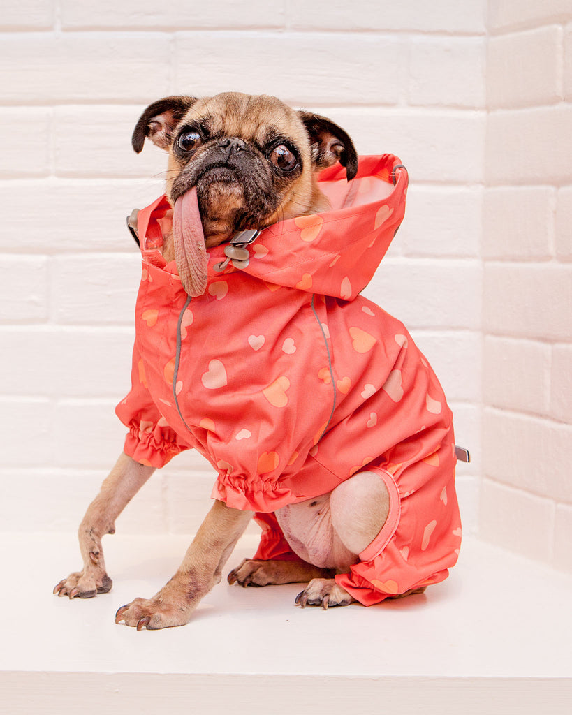 Reflective Dog Rainsuit in Pink Hearts