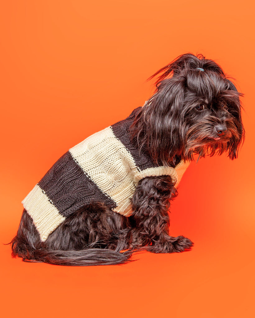 Fisherman Cable Striped Dog Sweater