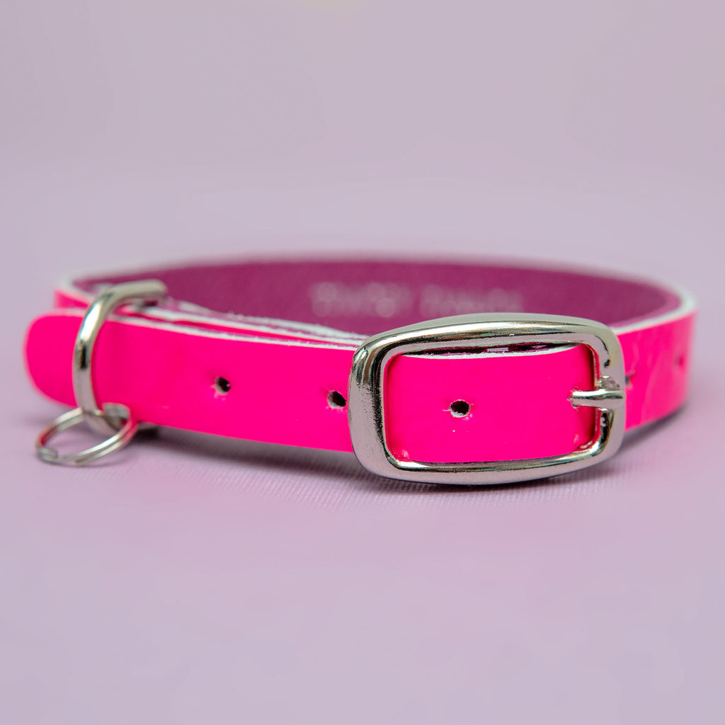 The Cleo Leather Tag Collar in Pink Fluoro Patent (Exclusive to Dog & Co.)