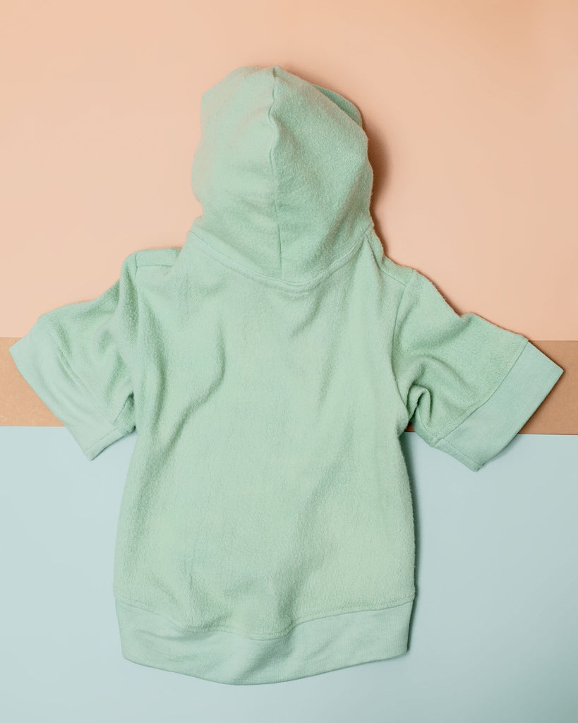 The Basics Dog Hoodie in Summer Seafoam (Made in the USA)