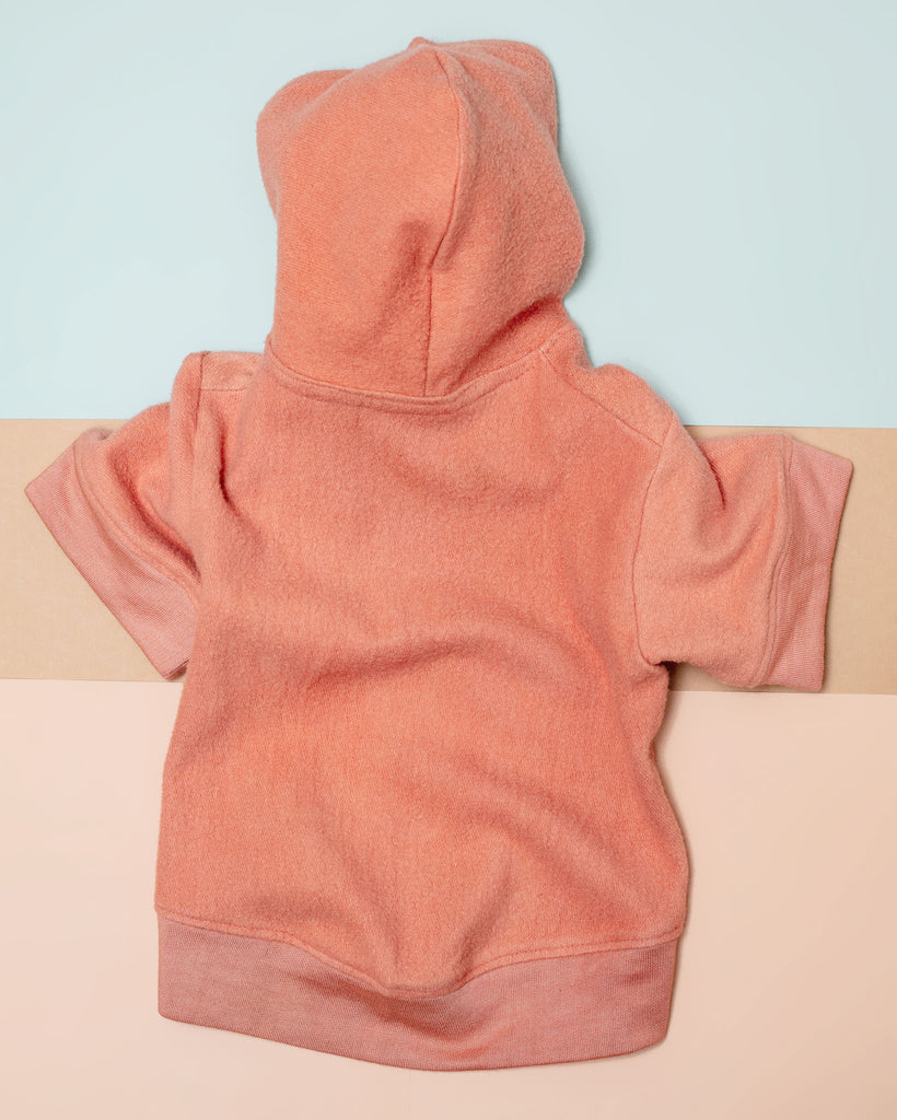 The Basics Dog Hoodie in Copper Terra