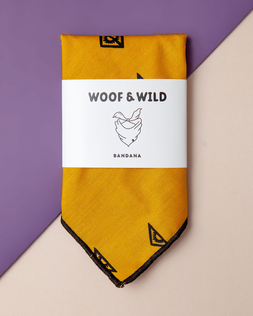 Mesa Cotton Dog Bandana
