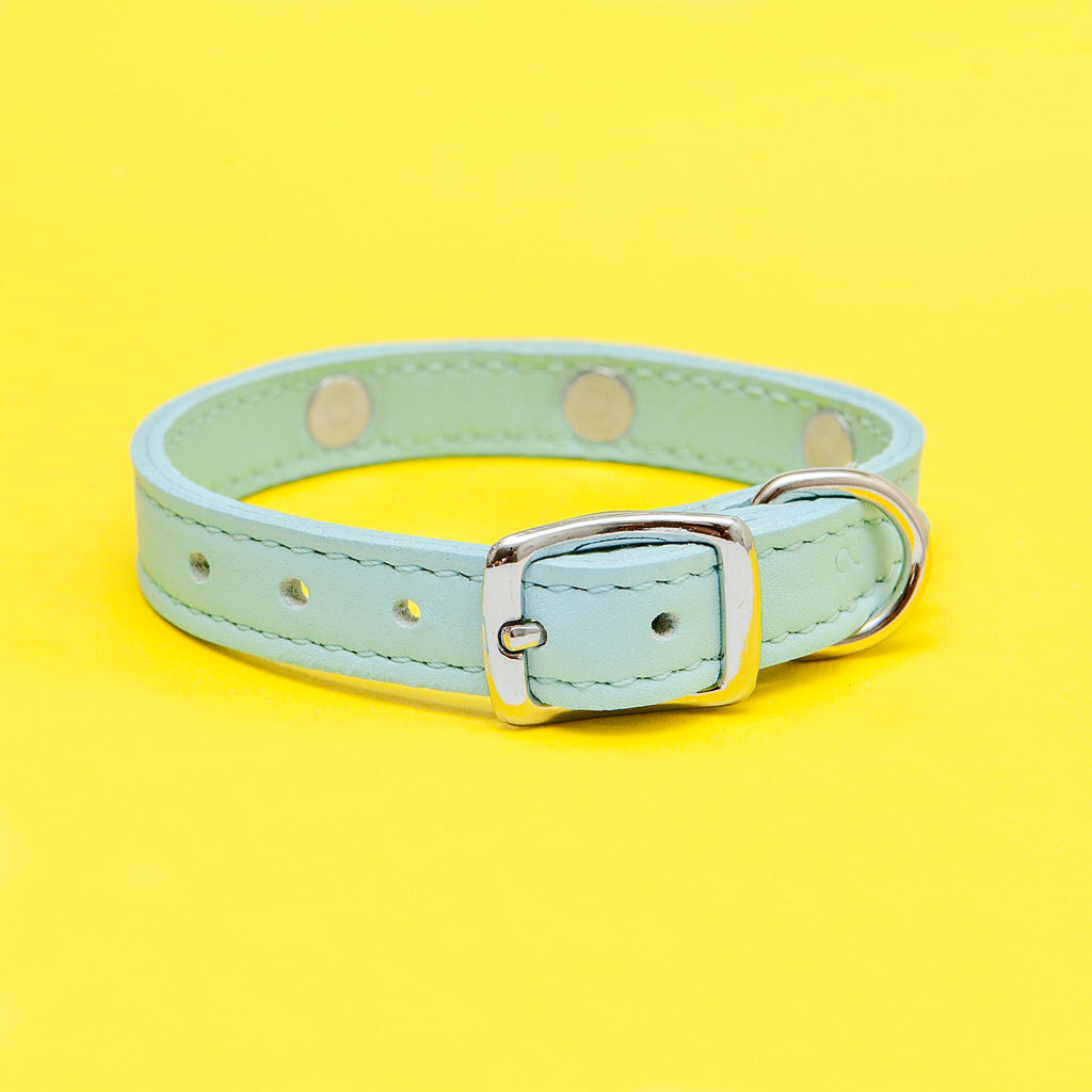 Daisy Collar in Blue Leather