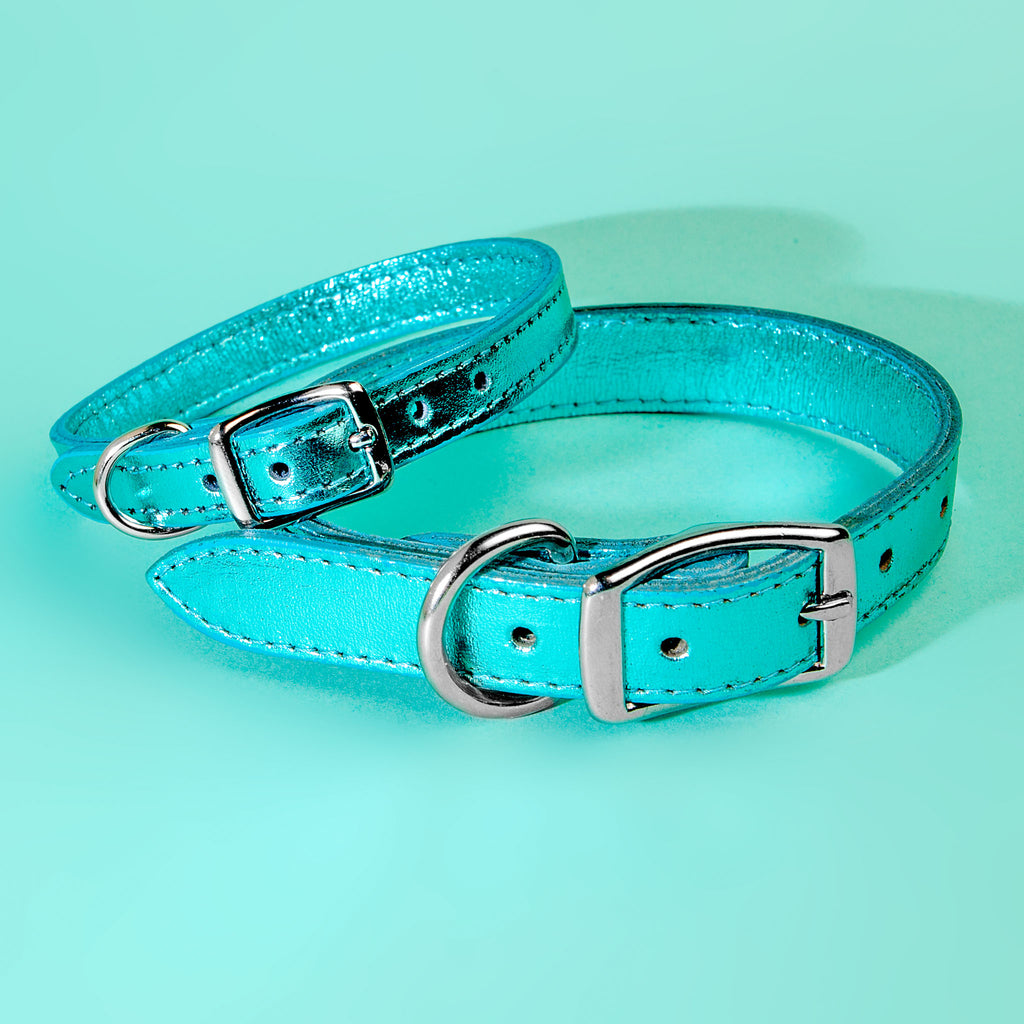 Shimmer Leather Dog Leash in Metallic Turquoise