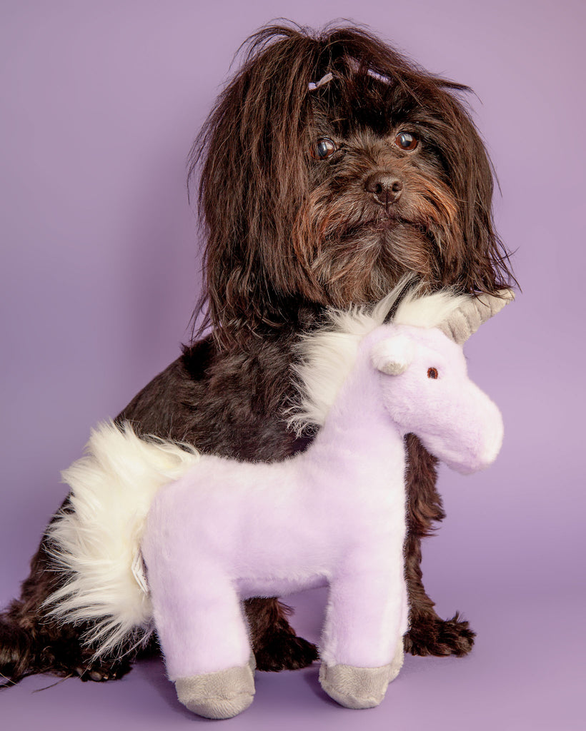Violet Unicorn Plush Dog Toy