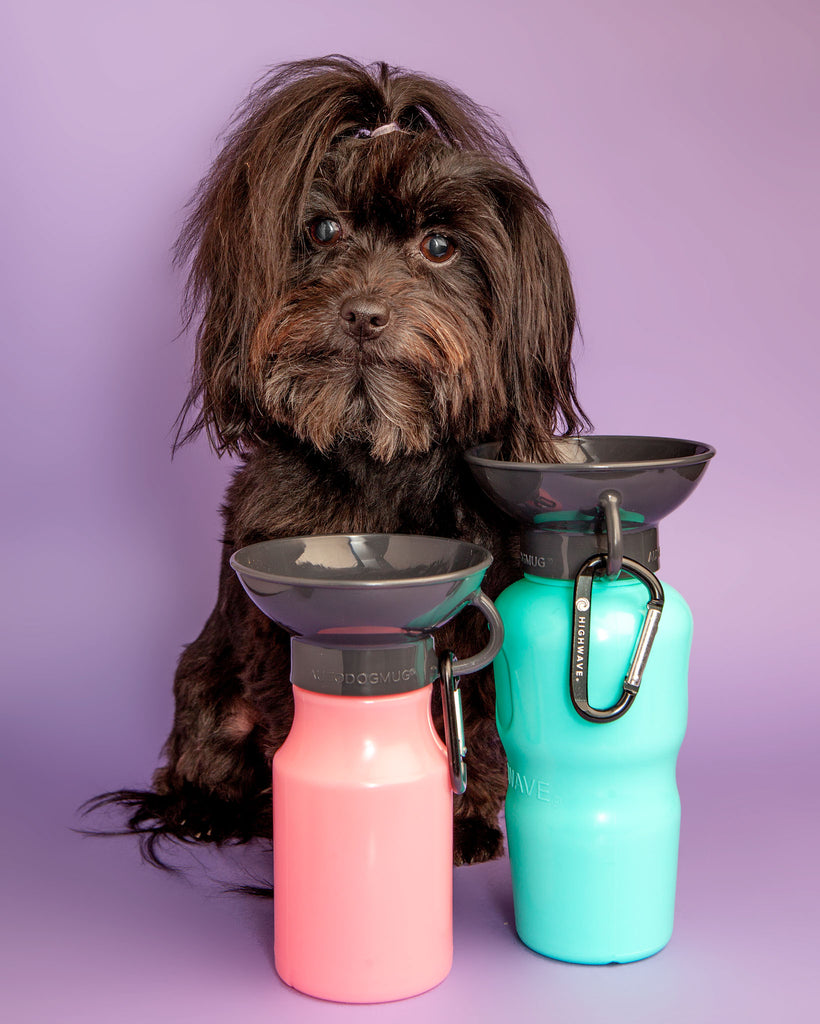 AutoDogMug Water Bottle in Soft Pink