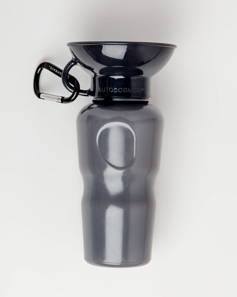 Auto Dog Water Bottle in Stone Gray