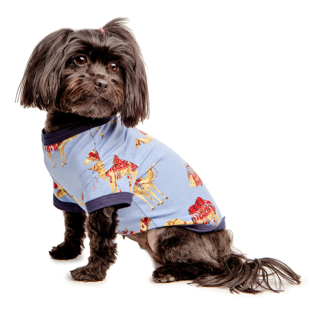 BEDHEAD | Lounge Dog T in Caravan