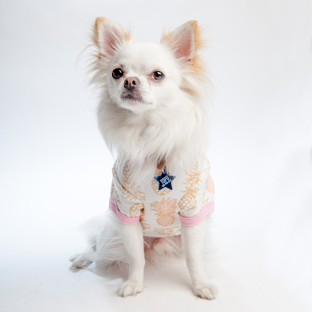 BEDHEAD | Lounge Dog T in Golden Pineapple