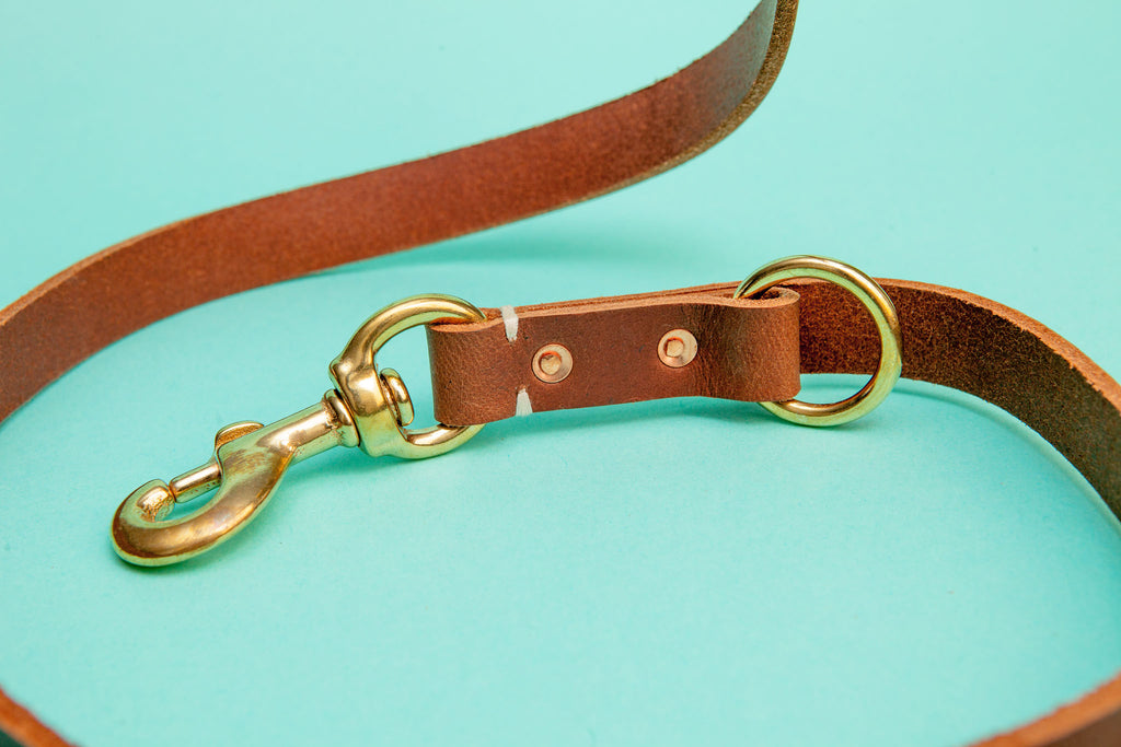Rambler Leash in Terra
