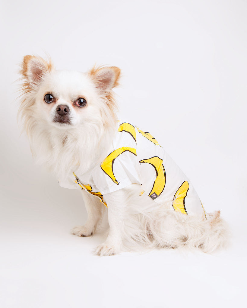 Banana Shirt (Immediate Ship)
