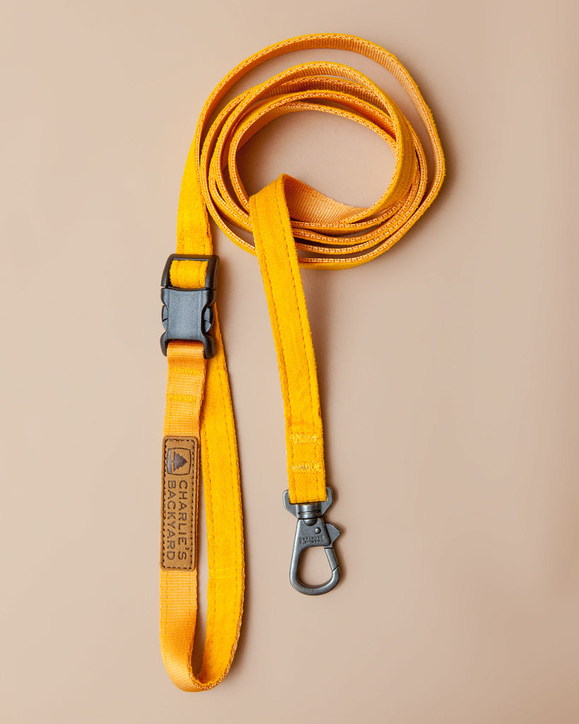 Adjustable Easy Dog Leash in Yellow