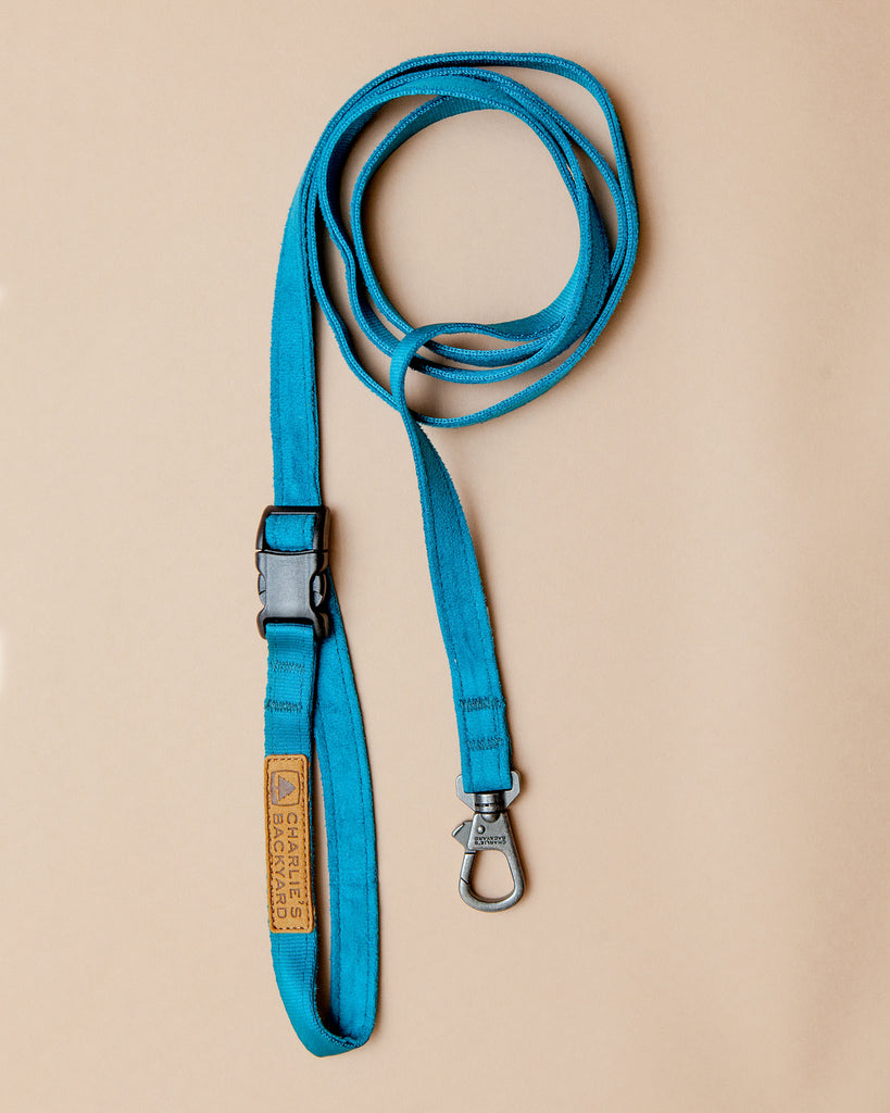 Adjustable Easy Dog Leash in Teal