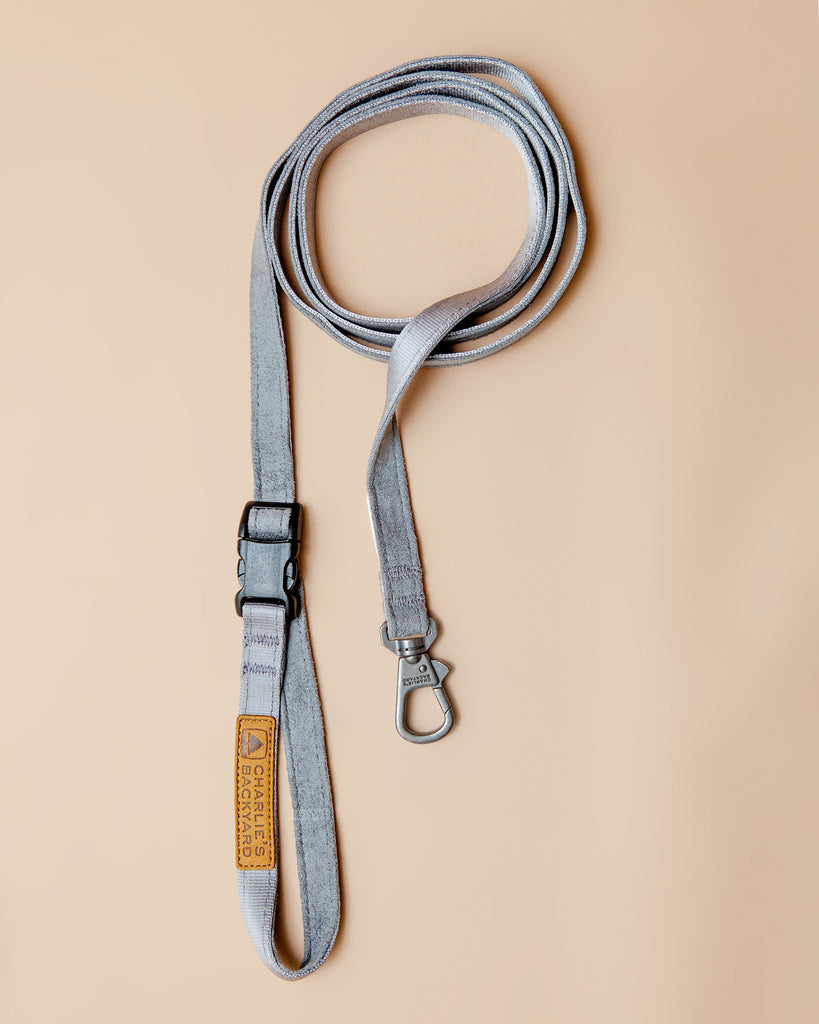 Adjustable Easy Dog Leash in Gray