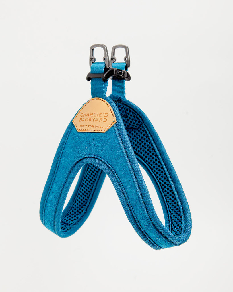 Buckle Up Easy Dog Harness in Teal