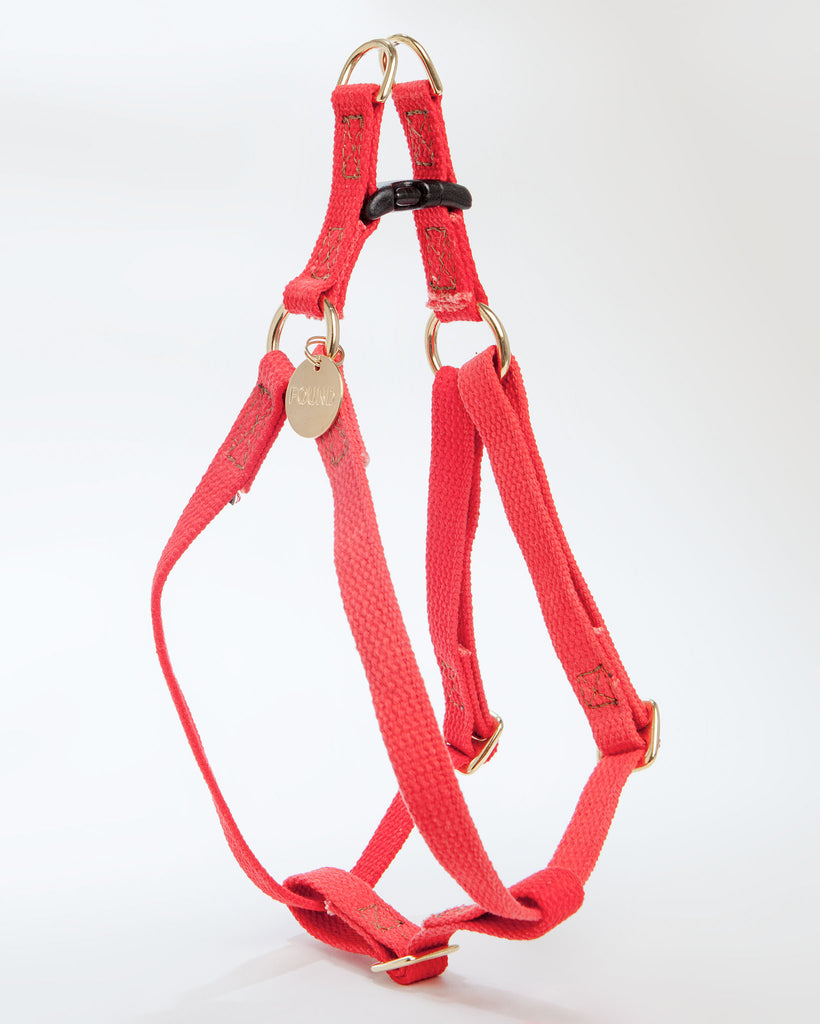 Cotton Webbing Harness in Coral