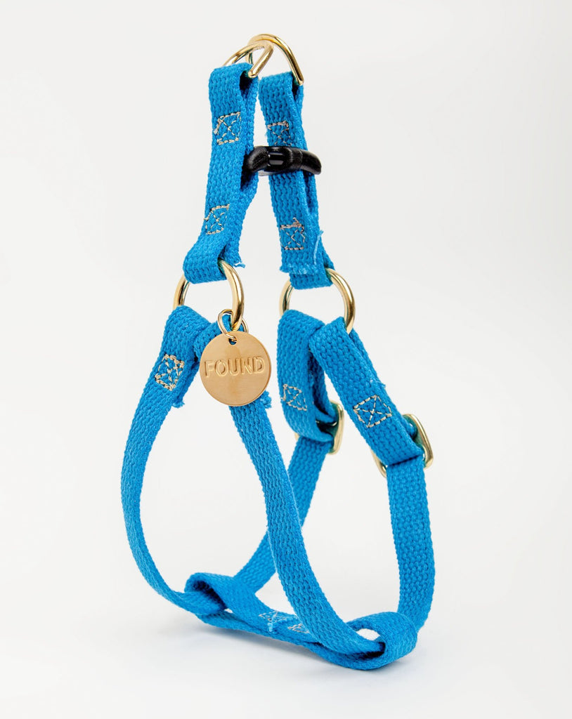 Cotton Webbing Dog Harness in Teal