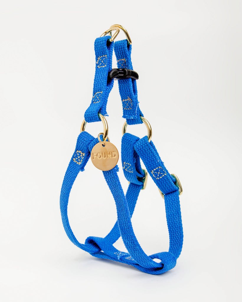 Cotton Webbing Harness in Cobalt Blue (FINAL SALE)