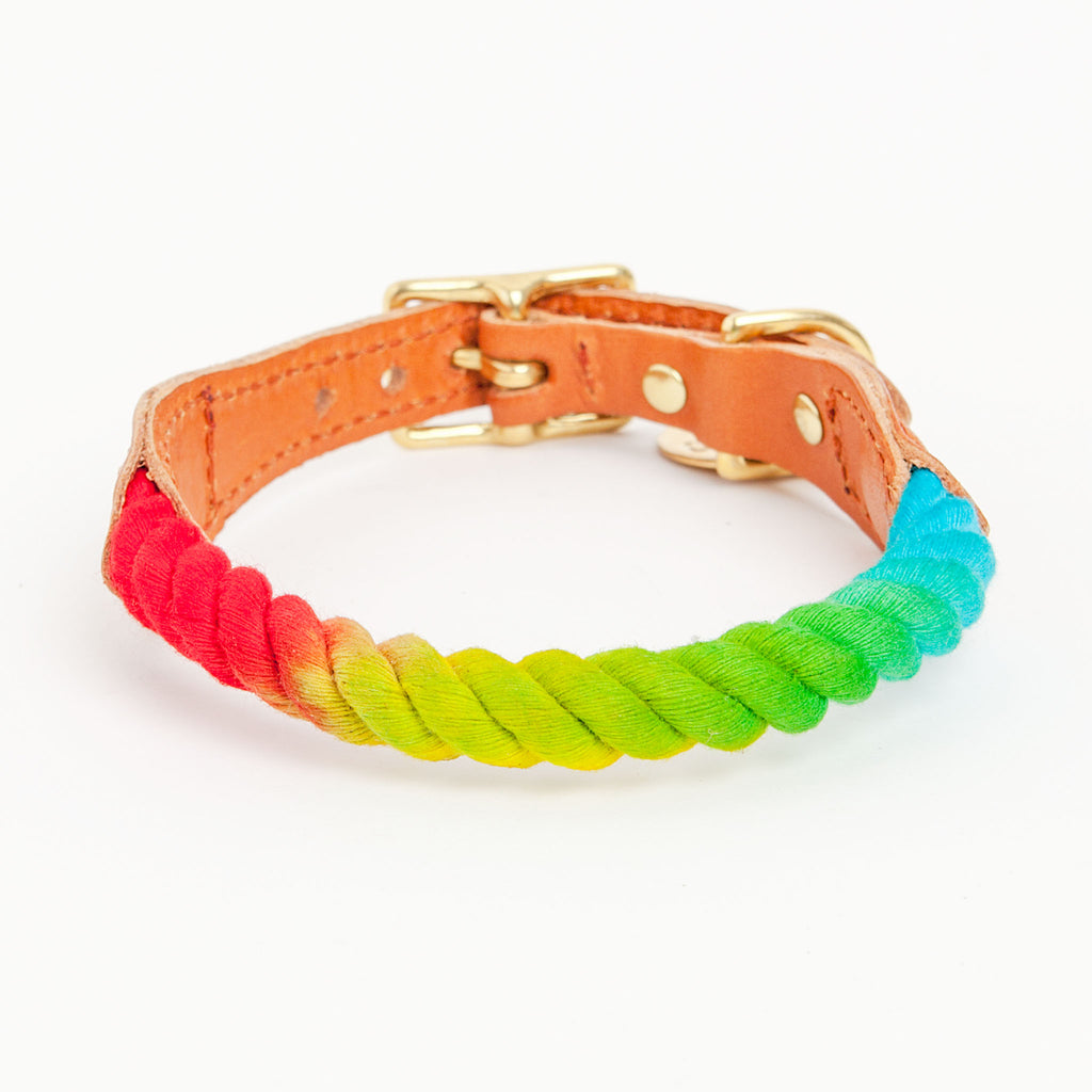 Rope Collar in Prismatic (FINAL SALE)