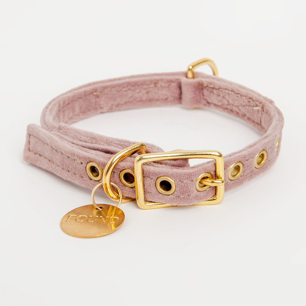Velvet Collar in Rose