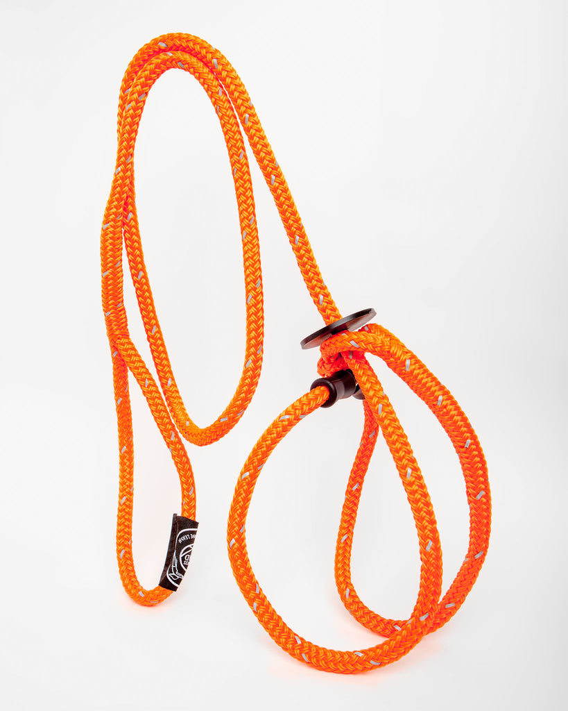 Harness Lead in Orange Reflective