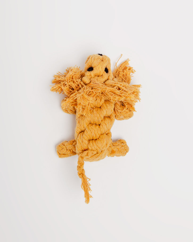 Larry the Lion Rope Toy