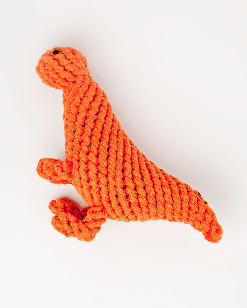 T Rex Rope Toy (FINAL SALE)