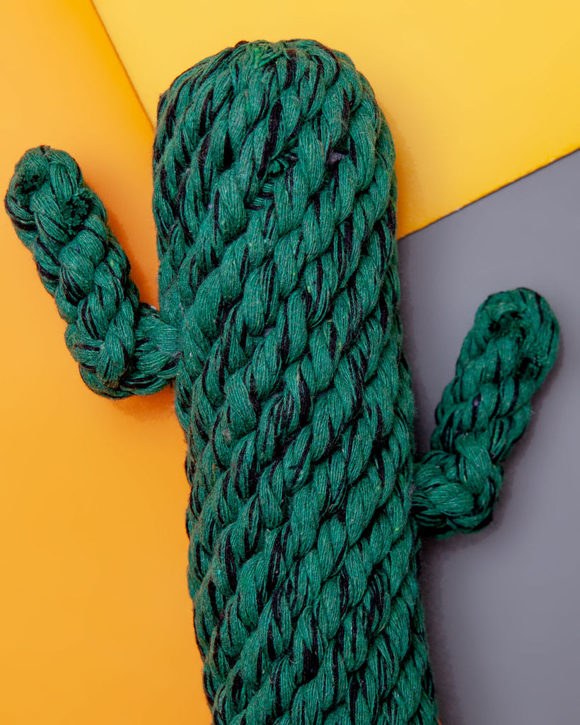 Cactus Rope Dog Toy