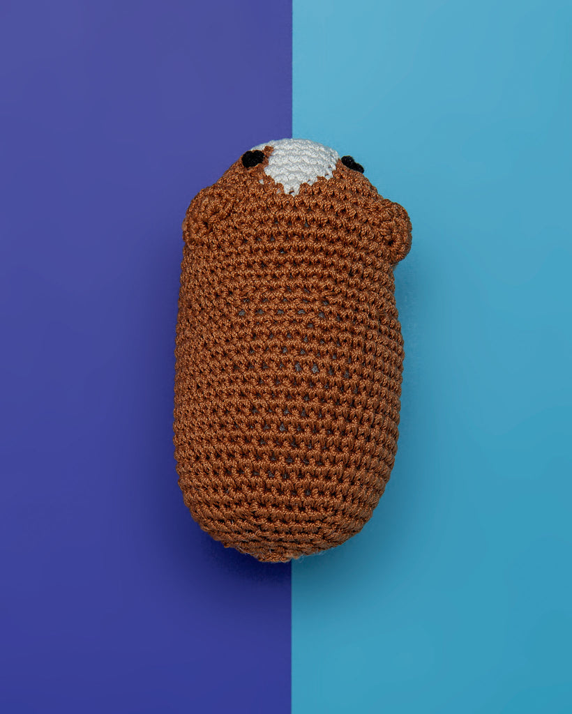 Guinea Pig Organic Knit Dog Toy
