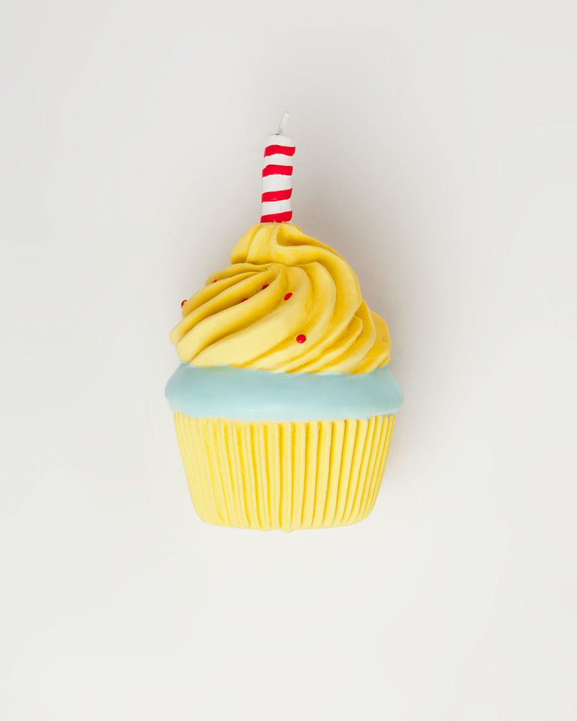 Birthday Cupcake Toy