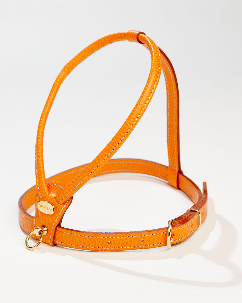 Italian Leather Harness in Orange