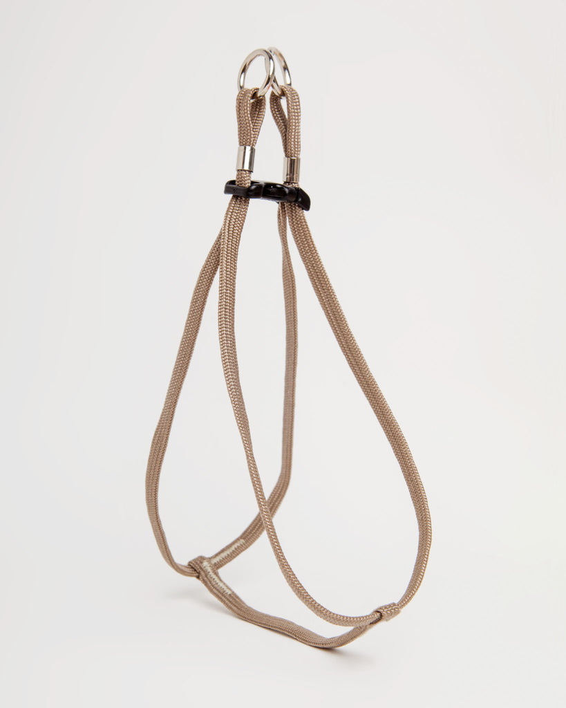 Step-In Harness + Lead in Tan