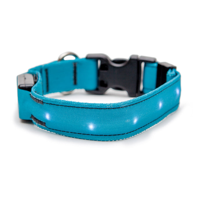 ORION COLLARS | LED Dog Collar in Teal