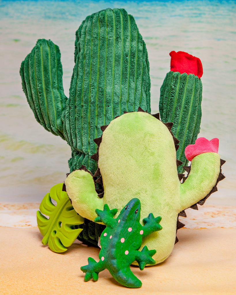 Cactus Plush Toy (FINAL SALE)