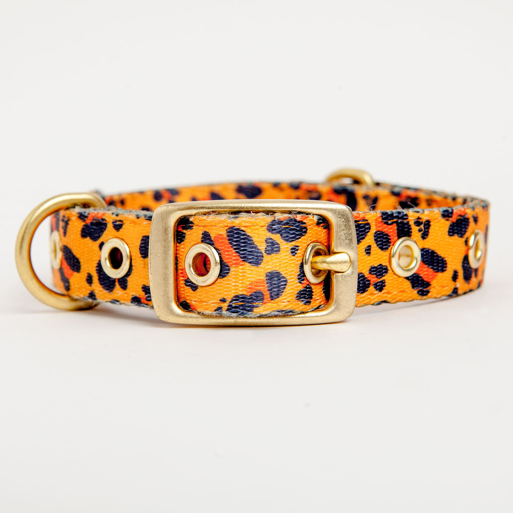 Tarzan Dog Collar