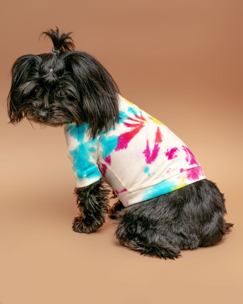 Hand Dyed Dog T-Shirt in Prismatic