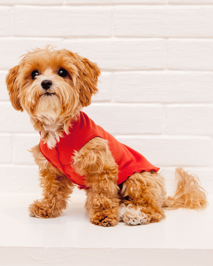 Pullover Stretch Dog Fleece in Paprika