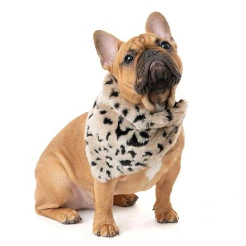 FABULOUS FURS | Dog Bandana in Cheetah