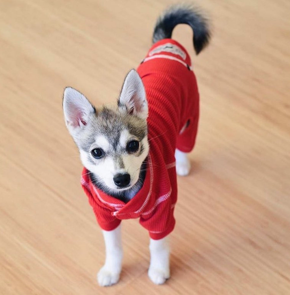 FAB DOG | Thermal PJs in Red