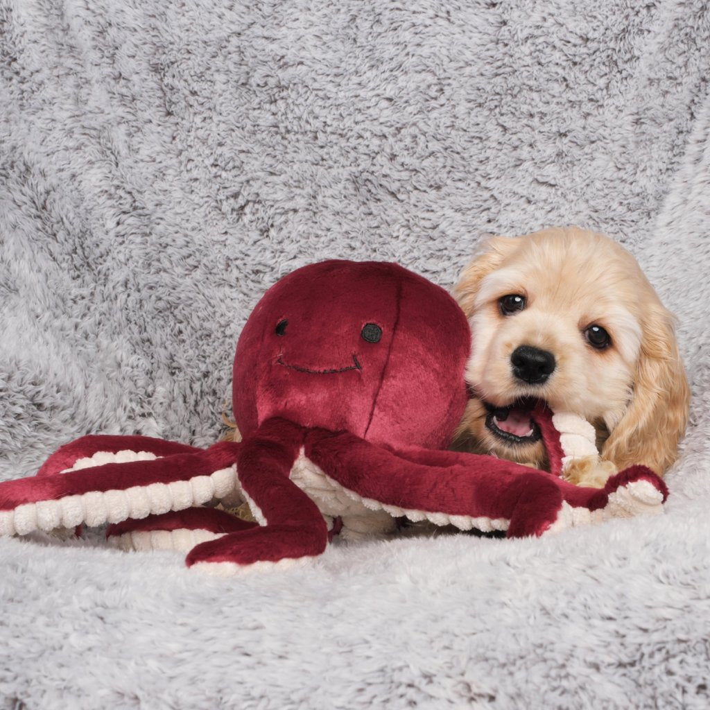 Olympia Octopus Plush Dog Toy