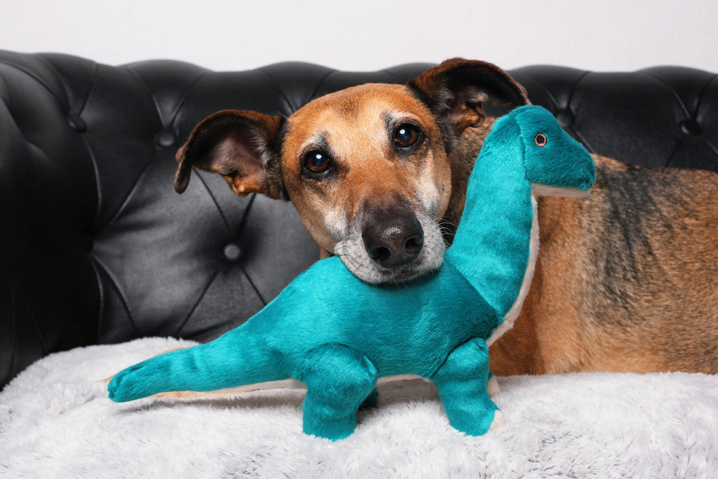 Ross Brachiosaurus Plush Dog Toy