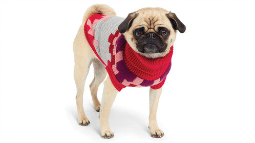 GF PET | Blackcomb Sweater in Red