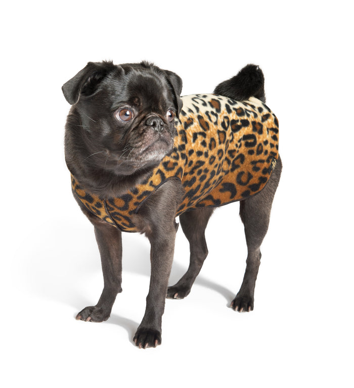 GOLD PAW | Stretch Fleece in Leopard