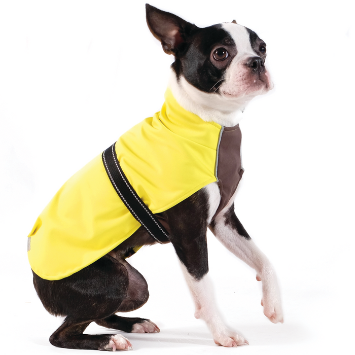 GOLD PAW | Rain Paw Jacket in Yellow & Black