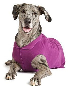 GOLD PAW | Stretch Fleece in Eggplant