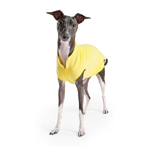 GOLD PAW | Stretch Fleece in Sunflower Yellow