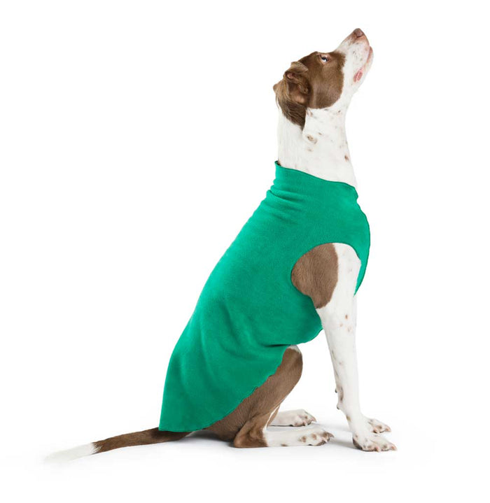 GOLD PAW | Stretch Fleece in Emerald Green (BIG DOG SALE)