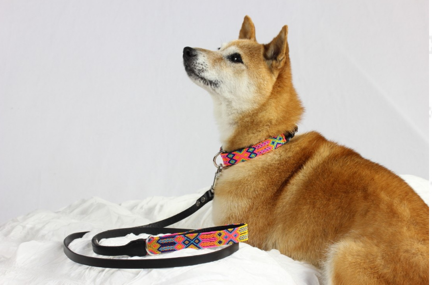 HEKA PET | Coral Leather Collar