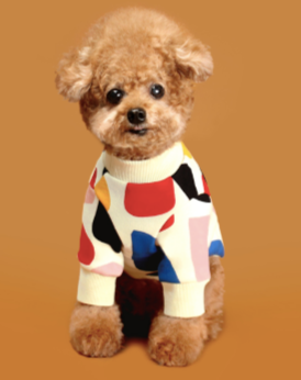 C1 Colorful Design Dog Sweatshirt in Ivory